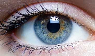 Американская разведка недовольна биометрической идентификацией в Европе