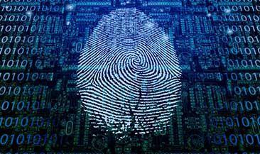 Check Point: Рынок информационной безопасности поставлен на паузу