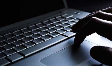 Более 80 тысяч индивидуальных предпринимателей подключились к сервису «Личный кабинет налогоплательщика ИП»