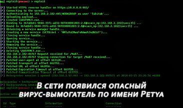 В сети появился опасный вирус-вымогатель по имени Petya