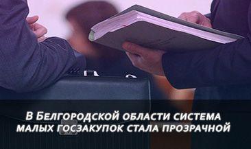 В Белгородской области система малых госзакупок стала прозрачной