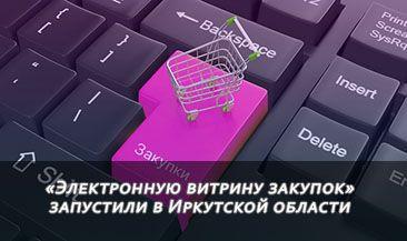 «Электронную витрину закупок» запустили в Иркутской области