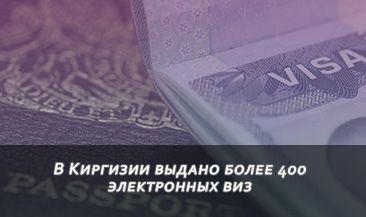 В Киргизии выдано более 400 электронных виз