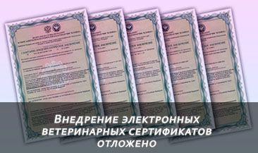 Внедрение электронных ветеринарных сертификатов отложено