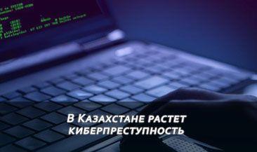 В Казахстане растет киберпреступность