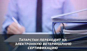 Татарстан переходит на электронную ветеринарную сертификацию