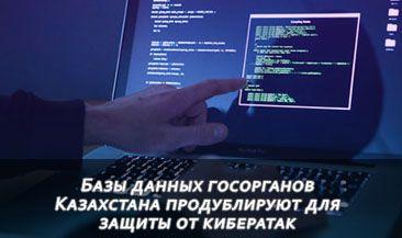 Базы данных госорганов Казахстана продублируют для защиты от кибератак