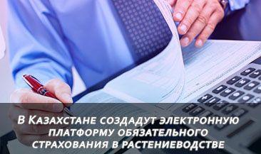 В Казахстане создадут электронную платформу обязательного страхования в растениеводстве