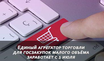 Единый агрегатор торговли для госзакупок малого объёма заработает с 1 июля