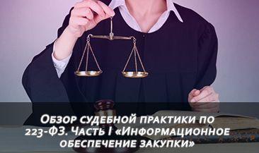 Обзор судебной практики по 223-ФЗ. Часть I «Информационное обеспечение закупки»