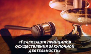 Обзор судебной практики по 223-ФЗ. Часть II «Реализация принципов осуществления закупочной деятельности»