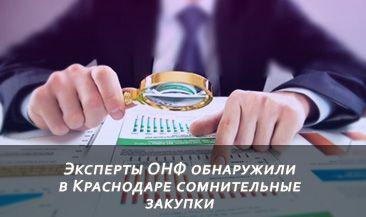 Эксперты ОНФ обнаружили в Краснодаре сомнительные закупки спортивного инвентаря