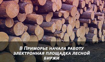 В Приморье начала работу электронная площадка лесной биржи