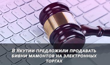 В Якутии предложили продавать бивни мамонтов на электронных торгах
