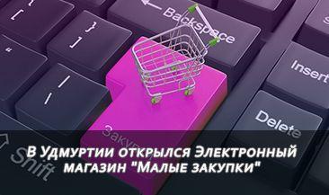 """В Удмуртии открылся Электронный магазин """"Малые закупки"""""""