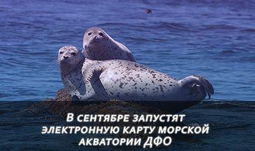 В сентябре запустят электронную карту морской акватории ДФО