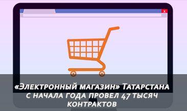 «Электронный магазин» Татарстана с начала года провел 47 тысяч контрактов
