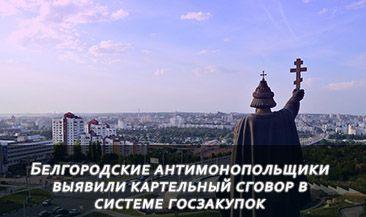 Белгородские антимонопольщики выявили картельный сговор в системе госзакупок