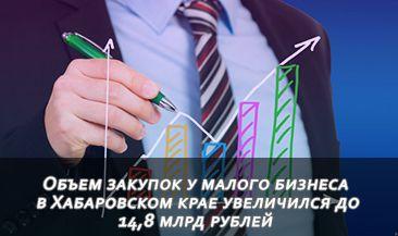 Объем закупок у малого бизнеса в Хабаровском крае увеличился до 14,8 млрд рублей