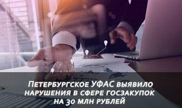 Петербургское УФАС выявило нарушения в сфере госзакупок на 30 млн рублей