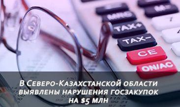 В Северо-Казахстанской области выявлены нарушения госзакупок на $5 млн