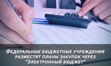 """Федеральные бюджетные учреждения разместят планы закупок через """"Электронный бюджет"""""""