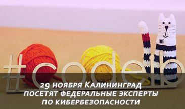 29 ноября Калининград посетят федеральные эксперты по кибербезопасности