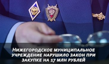 Нижегородское муниципальное учреждение нарушило закон при закупке на 17 млн рублей