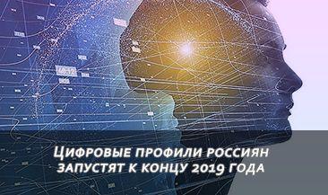 Цифровые профили россиян запустят к концу 2019 года
