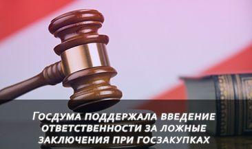 Госдума поддержала введение ответственности за ложные заключения при госзакупках