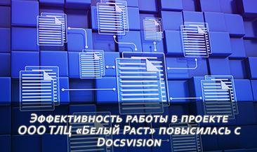 Эффективность работы в проекте ООО ТЛЦ «Белый Раст» повысилась с Docsvision