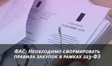 ФАС: Необходимо сформировать правила закупок в рамках 223-ФЗ