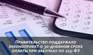 Правительство поддержало законопроект о 30-дневном сроке оплаты при закупках по 223-ФЗ