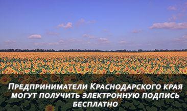 Предприниматели Краснодарского края могут получить электронную подпись бесплатно