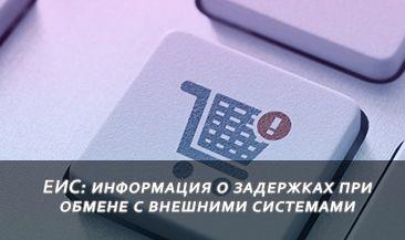 ЕИС: информация о задержках при обмене с внешними системами