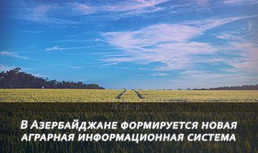 В Азербайджане формируется новая аграрная информационная система